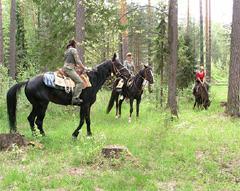катание на лошадях Сергиев Посад