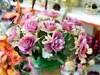 Где купить цветы в Сергиевом Посаде