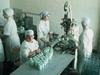 В Сергиево-Посадском районе может появиться новый молочный завод за 900 миллионов рублей